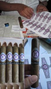 cigars panel